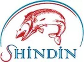 SHINDIN